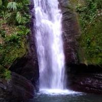 Bowden Hill Falls, Saint Andrew