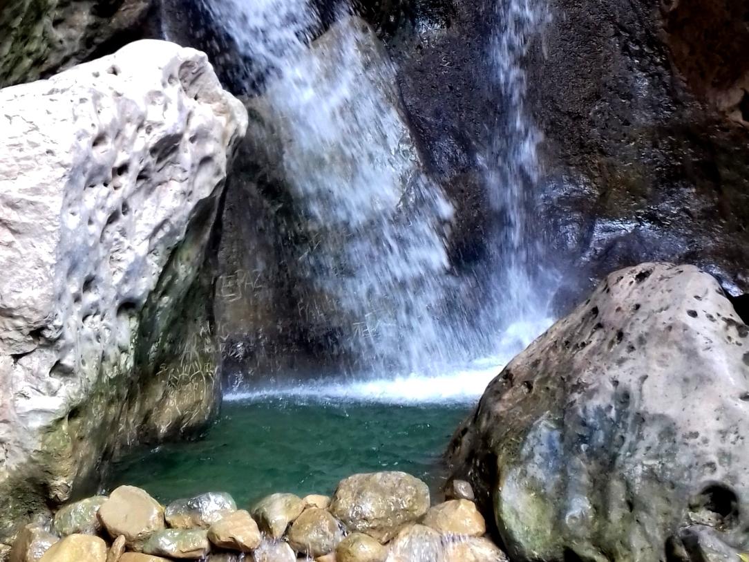 Cane river 2