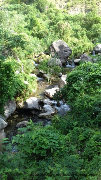 Upstream at the Cane River Falls