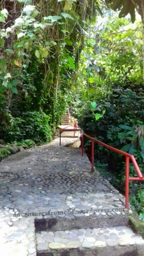 Path to the falls