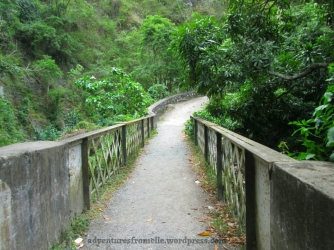 Bridge No. 1 Gordon Town Falls