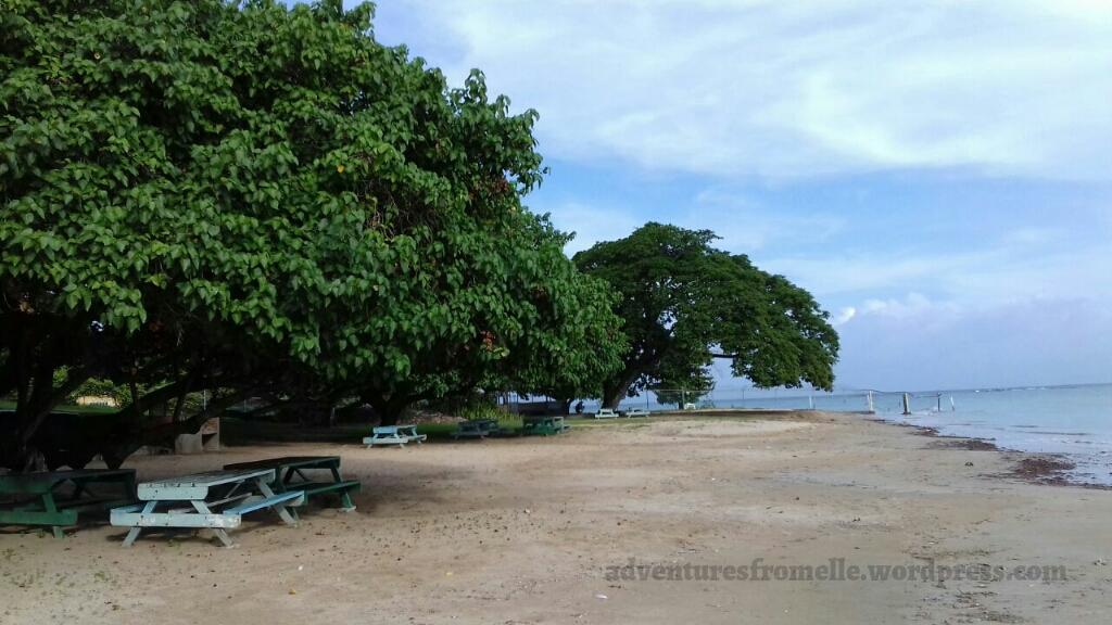 benches uwi beach