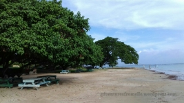 Benches along the shore at UWI Lyssons Beach