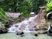 little dunns river falls