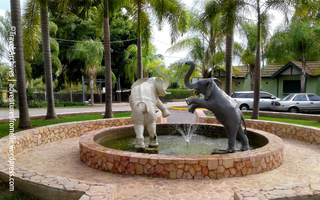 fountain-hope zoo