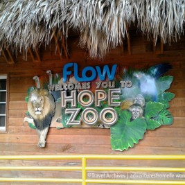 Hope Zoo Kingston