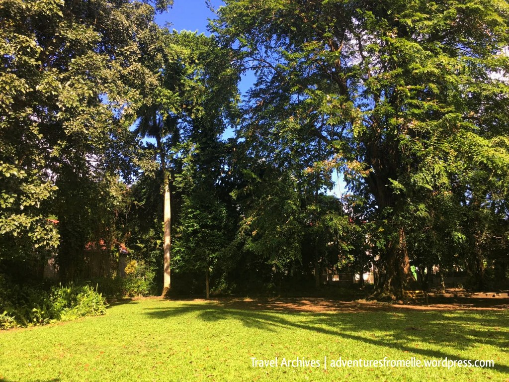 lawns-bath botanical garden