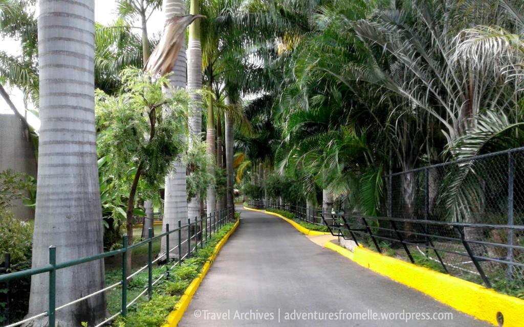 pathways-hope zoo kingston