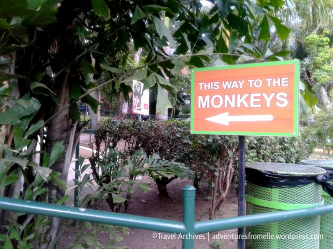 this way to monkeys sign-hope zoo
