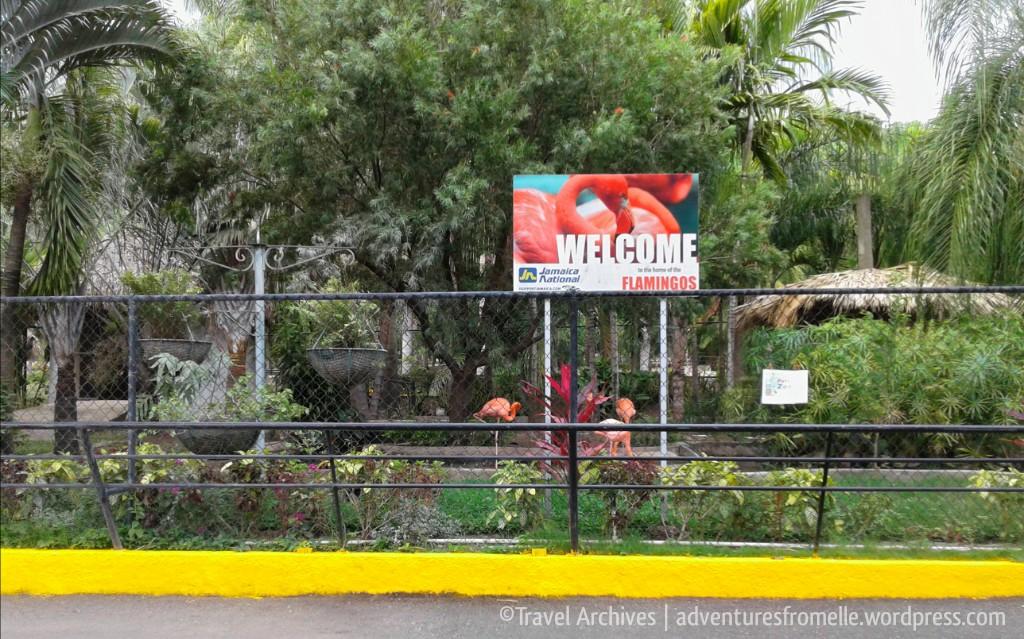 welcome-hope zoo