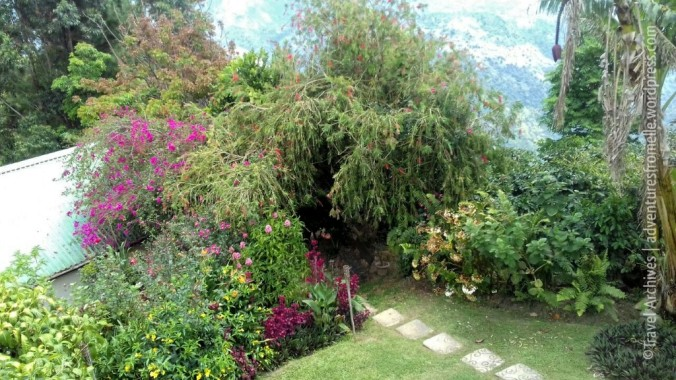 beautiful flower lined path-lime tree farm