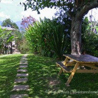 Lime Tree Farm, Saint Andrew