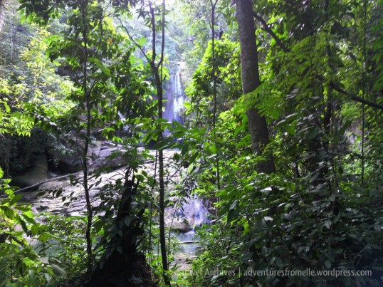 A glimpse of the waterfall through the trees
