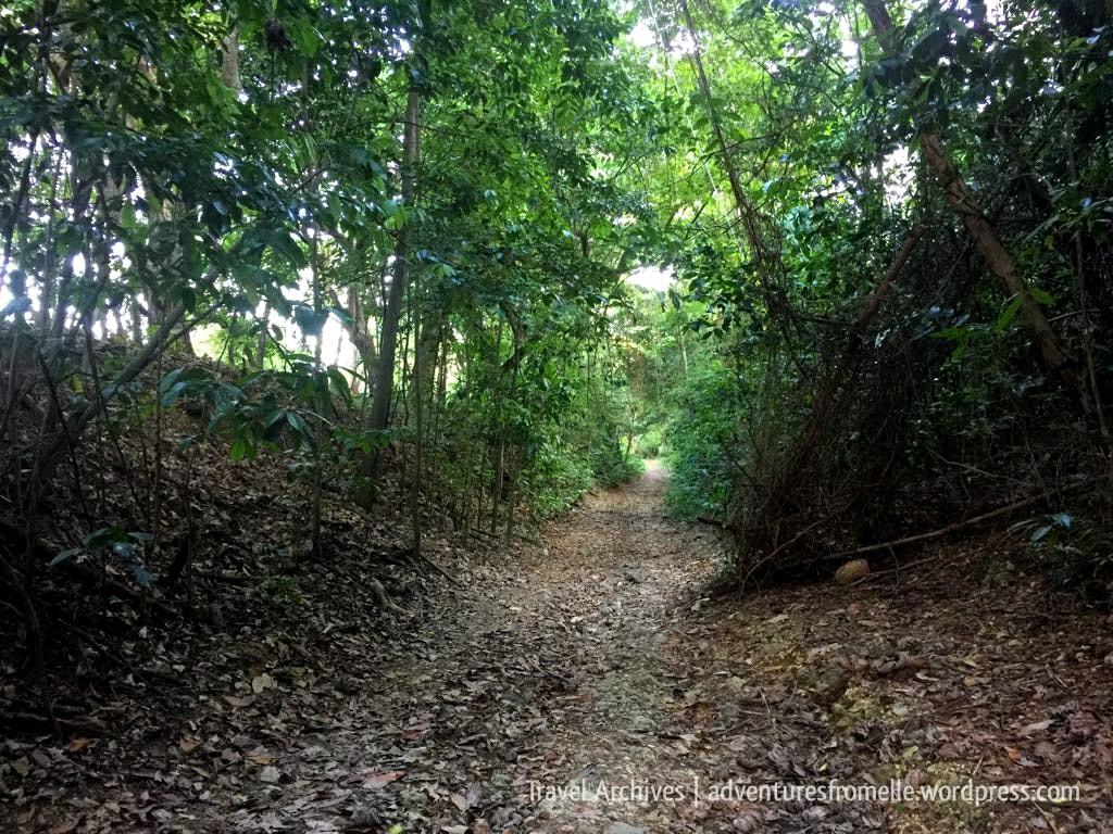 kwame falls trail 7