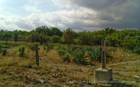Inside the Old Naval Cemetery