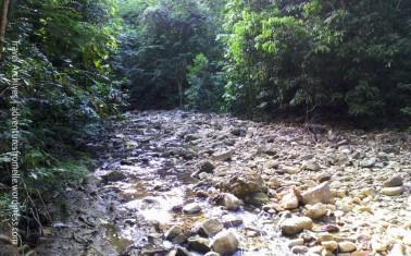 river-kwame falls trail