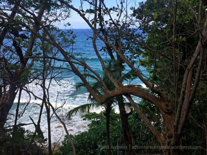 Glimpsing the stunning beach through the trees
