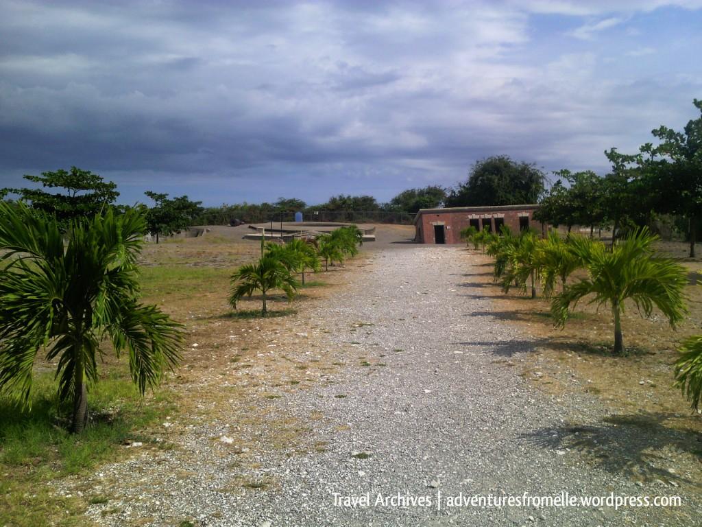 treelined walk to giddy house