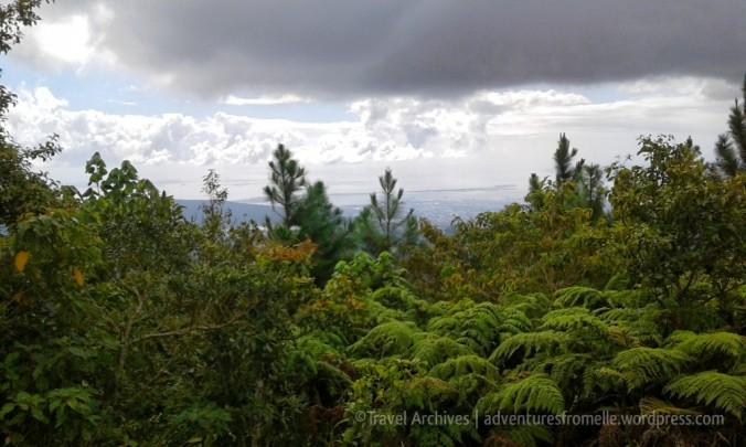 views-holywell