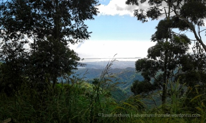 views4-holywell