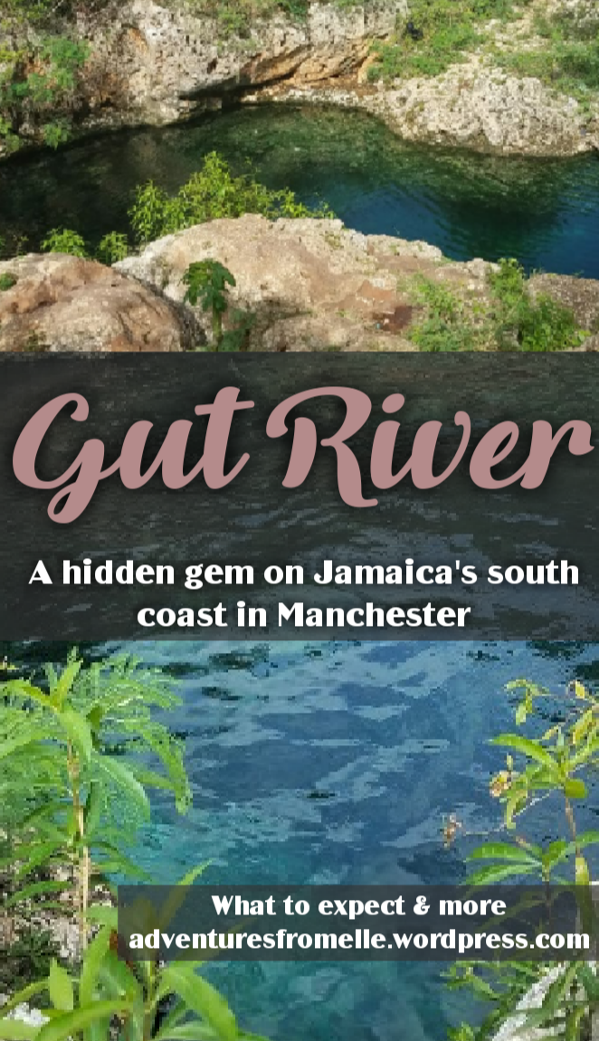 Gut river-pinnable image