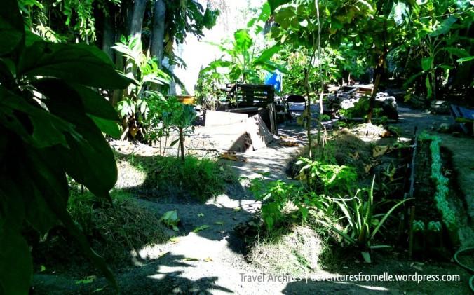 life yard farm