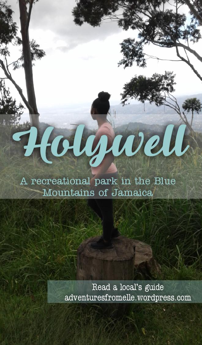Holywell-pin