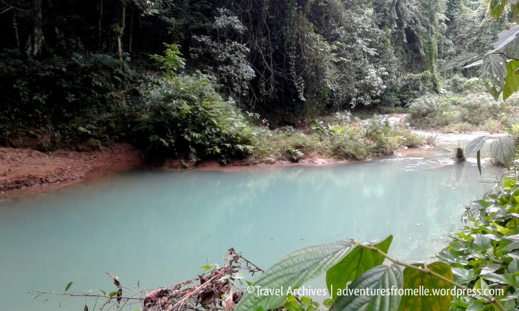 breadnut river