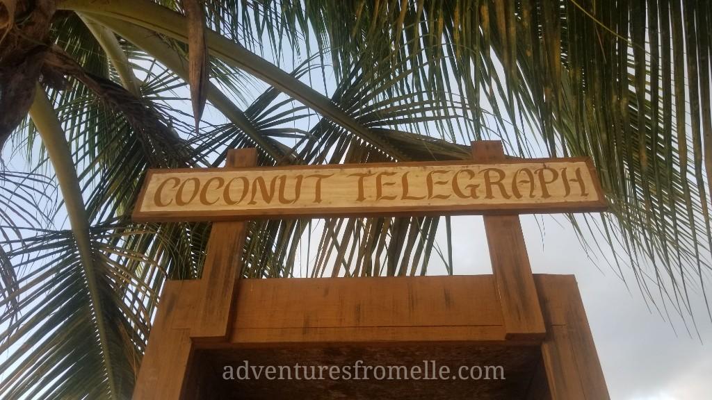 coconut telegraph 2