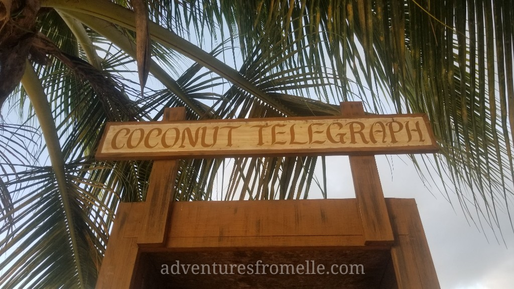 coconut telegraph 2