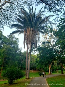 royal botanic garden5.jpg